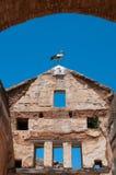 Аист на крыше Стоковые Изображения