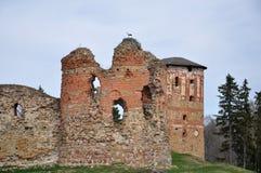 Аист на руинах старого замка Стоковые Фотографии RF
