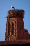 Аист на старой башне kasbah, Марокко Стоковые Изображения