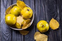 Айва плодоовощи осени Стоковое Фото