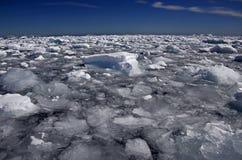 Айсберги и порывистый лед, Антарктика Стоковая Фотография