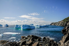 Айсберги 2011 Ньюфаундленда Стоковое Фото