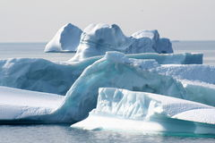 айсберги Стоковое Изображение RF