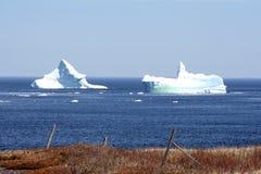 айсберги bonavista залива Стоковое фото RF