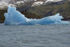 Айсберг в сером цвете Lago, Torres del Paine, Чили Стоковая Фотография RF