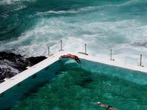 айсберг клуба bondi пляжа Стоковое Фото