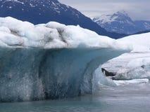 айсберг Стоковые Изображения