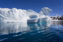айсберг cuverville залива Антарктики Стоковые Фотографии RF