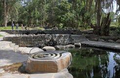 Аквапарк Eden Стоковое Фото
