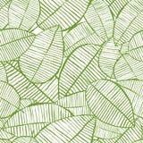 Акварель вектора безшовная выходит картина Зеленая и белая предпосылка весны Флористический дизайн для печати ткани моды Стоковая Фотография RF