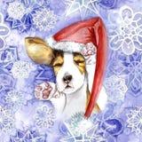 акварель на рождество и Новый Год, собака в шляпе Санта Клауса, шляпе зимы Стоковая Фотография