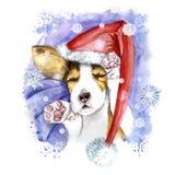 акварель на рождество и Новый Год, собака в шляпе Санта Клауса, шляпе зимы Стоковая Фотография RF
