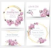 Акварель подняла вектор собрания карт цветков установленный Винтажное приветствие или визитная карточка, приглашение свадьбы, спа иллюстрация вектора