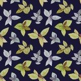 Акварель покрасила листья Элегантные листья для дизайна искусства иллюстрация вектора