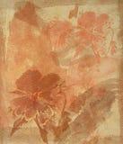 акварель предпосылки флористическая иллюстрация вектора