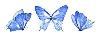 Акварель установила голубую изолированную бабочку на белой предпосылке стоковые изображения