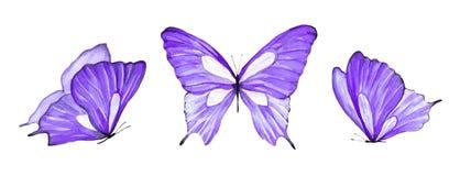 Акварель установила пурпурной бабочки изолированной на белой предпосылке стоковое изображение