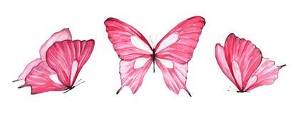 Акварель установила розовой бабочки изолированной на белой предпосылке стоковое фото