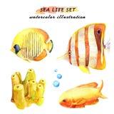 Акварель установила тропических рыб и коралла иллюстрация вектора