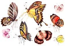 Акварель установленная с бабочками Стоковое Изображение RF