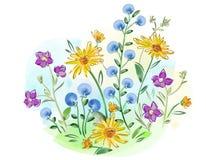 Акварель цветет фиолеты и pansy и выходит на луг Стоковое фото RF