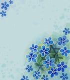 акварель цветка иллюстрация вектора