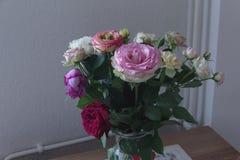 акварели вазы роз картины Стоковые Изображения