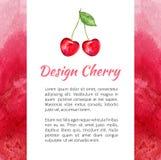 Акварель вишни изолированная на белой предпосылке, текстуре акварели красной, ягоде дизайна для упаковки, ярлыка плодоовощ вектор бесплатная иллюстрация