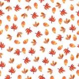 Акварель картины листьев осени безшовная Стоковые Фотографии RF