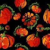 Акварель картины тыквы свежая Иллюстрация штока