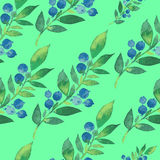 Акварель картины цветков Стоковые Фотографии RF