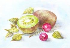 Акварель кивиа и вишни Натюрморт для кухни, рисуя на t Стоковое Фото