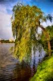 акварель парка ландшафта моста осени малая Тихий вечер весны Стоковые Изображения