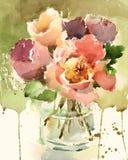 Акварель пионов цветет покрашенная рука иллюстрации Стоковые Фотографии RF