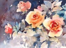Акварель роз цветет на темной покрашенной руке иллюстрации предпосылки Стоковые Фото