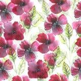 Акварель цветет безшовная картина Стоковое Фото