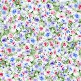 Акварель цветет предпосылка стоковое изображение rf