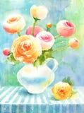 Акварель лютика цветет покрашенная рука иллюстрации Стоковая Фотография RF