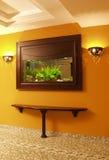 Аквариум в стене Стоковая Фотография
