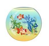 аквариум удит кругом Стоковая Фотография RF