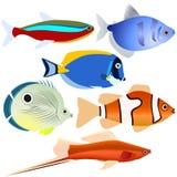 Аквариум fish-1 иллюстрация вектора