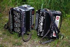 2 аккордеона на траве Стоковые Изображения