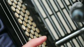 аккордеони сток-видео
