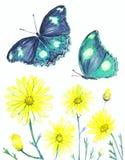 Акриловое изображение wildflowers и бабочек на белом backgrou иллюстрация штока