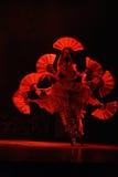 Акробаты Пекина Стоковое Изображение