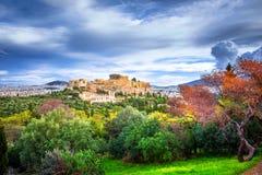 Акрополь с Парфеноном Взгляд через рамку с зелеными растениями, деревьями, старыми мраморами и городским пейзажем, Афинами стоковое изображение rf