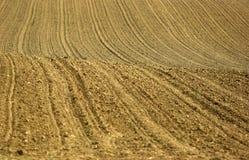 акры поля стоковое фото rf
