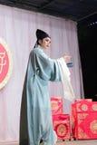 Актер, тишины тайваньской оперы jinyuliangyuan стоковое фото rf