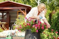 активная старшая женщина Стоковое фото RF