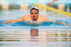 Активное заплывание человека в бассейне Стоковые Изображения RF